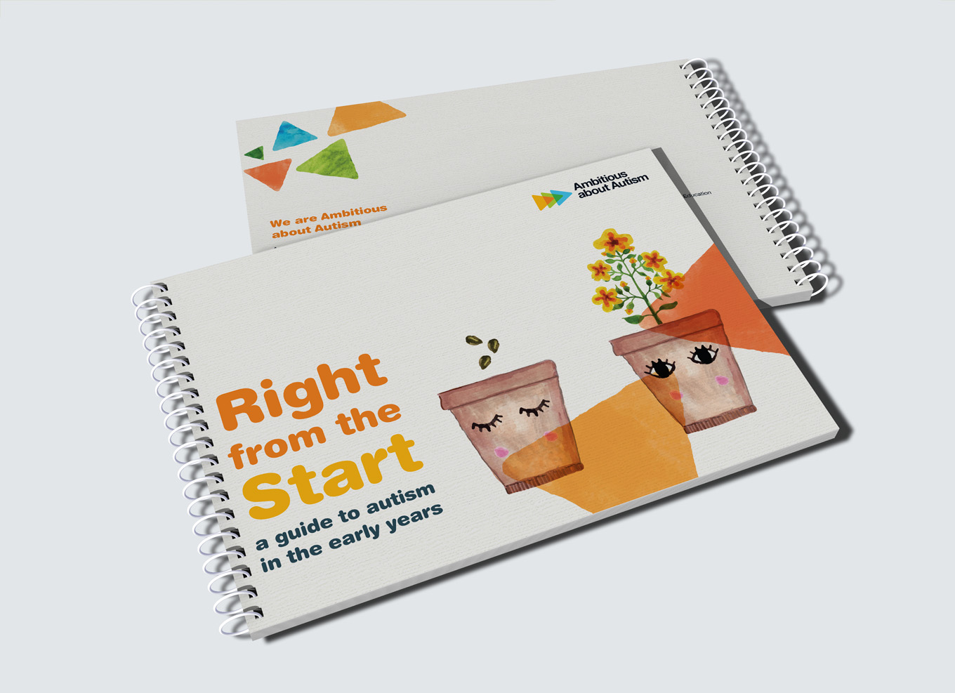 Ambitious about autism right from the start toolkit